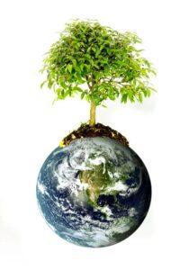 Всемирный день окружающей среды. День эколога в России