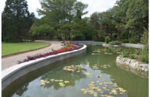 парк Монтедо